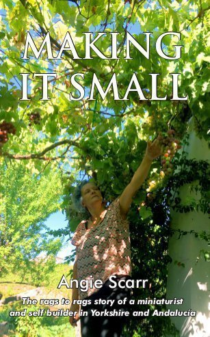 My autobiographical book Making It Small is now available!